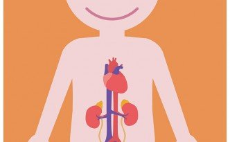 Hidronefrosis en niños. Síntomas , diagnóstico y tratamientos